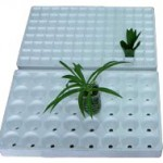 Seedling_tray